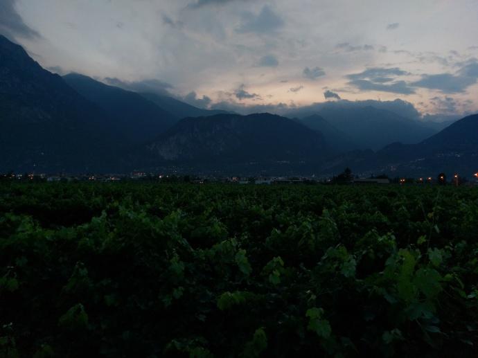 Blick von der Grotta über die Weingärten