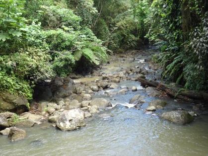 Grenada - Über Stock und über Stein
